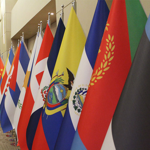 multiple human rights flags